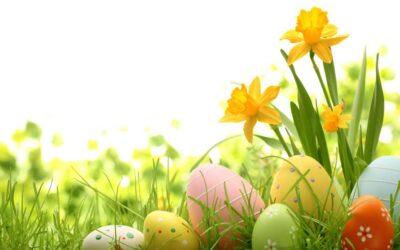 Menù di Pasqua da Asporto con consegna a Domicilio